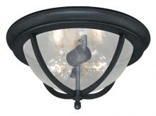 "Vaxcel International T0005 - Corsica 13"" Outdoor Ceiling Light"