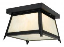 "Vaxcel International T0021 - Prairieview 9"" Outdoor Ceiling Light"